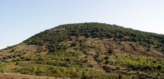 Coteaux du Languedoc, Le Terrasses du Larzac